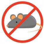 הדברת מכרסמים חולדות ועכברים
